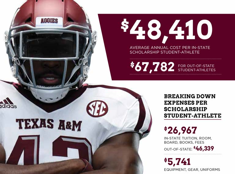 Student-Athlete Scholarships breakdown
